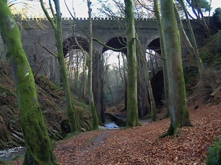 Groudle Viaduct from the bottom of the Glen. © Jon Wornham
