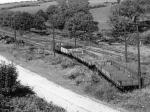 Dhoon Quarry, 1949